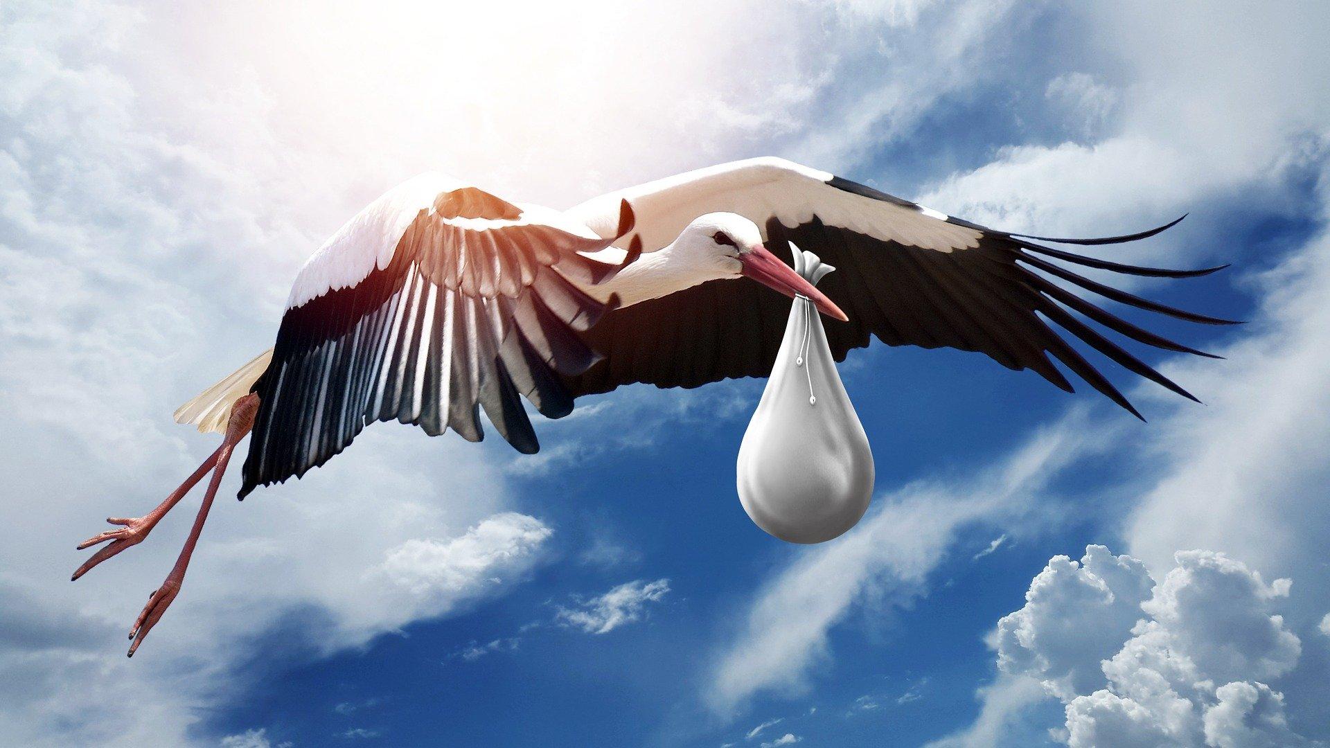 Stork med baby
