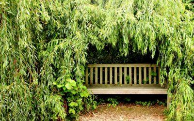 Find havemøbler til sommeren og hyggelige møbler til vinteren